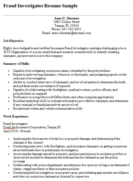 fraud investigator resume