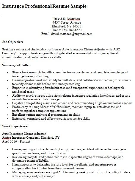 insurance professional resume