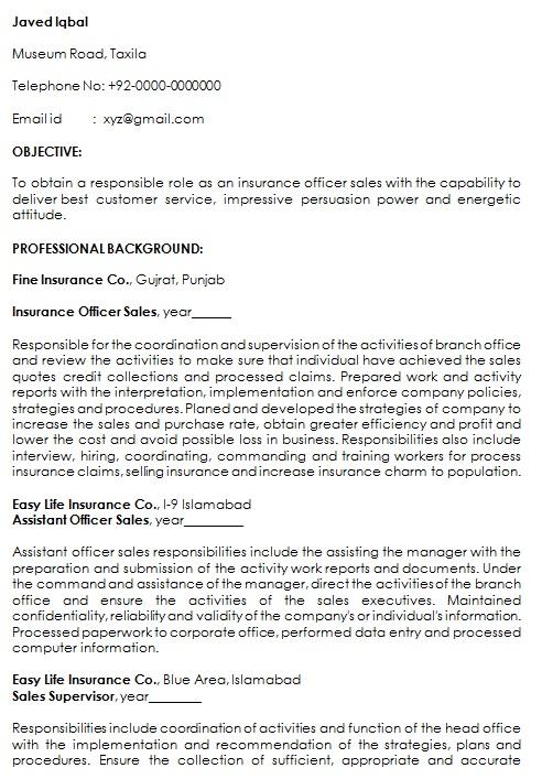 insurance resume template 2