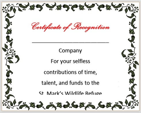 certificate of recognition 17