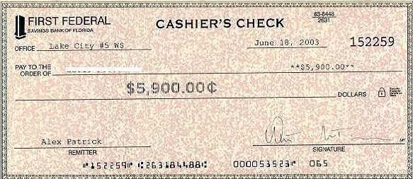 blank check template 26